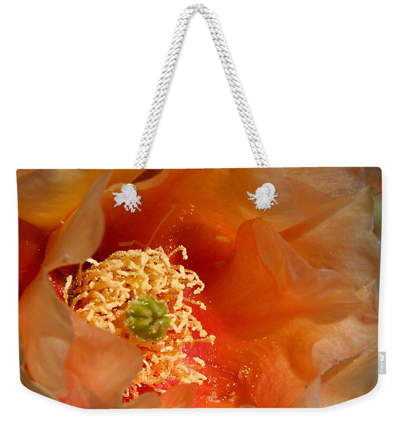 Flower Weekender Tote Bag featuring the photograph The Prickly Pear World by Joe Kozlowski