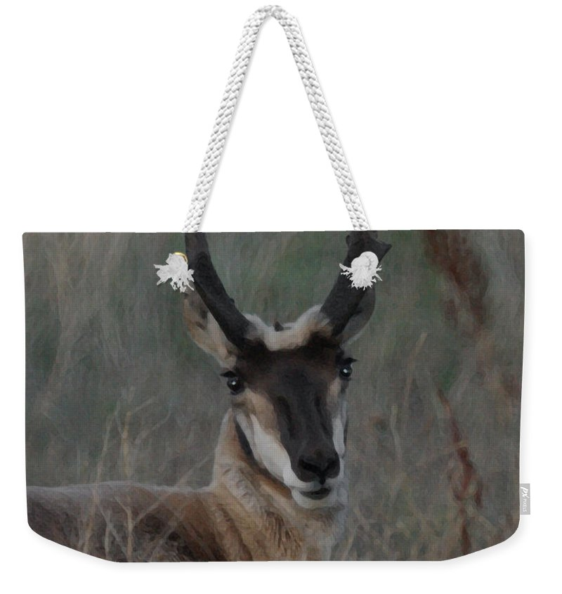 Animals Weekender Tote Bag featuring the digital art The Pronghorn 2 Dry Brushed by Ernie Echols