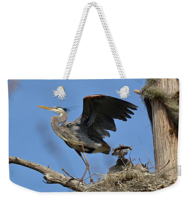Heron Weekender Tote Bag featuring the photograph The Protector by Carol Bradley
