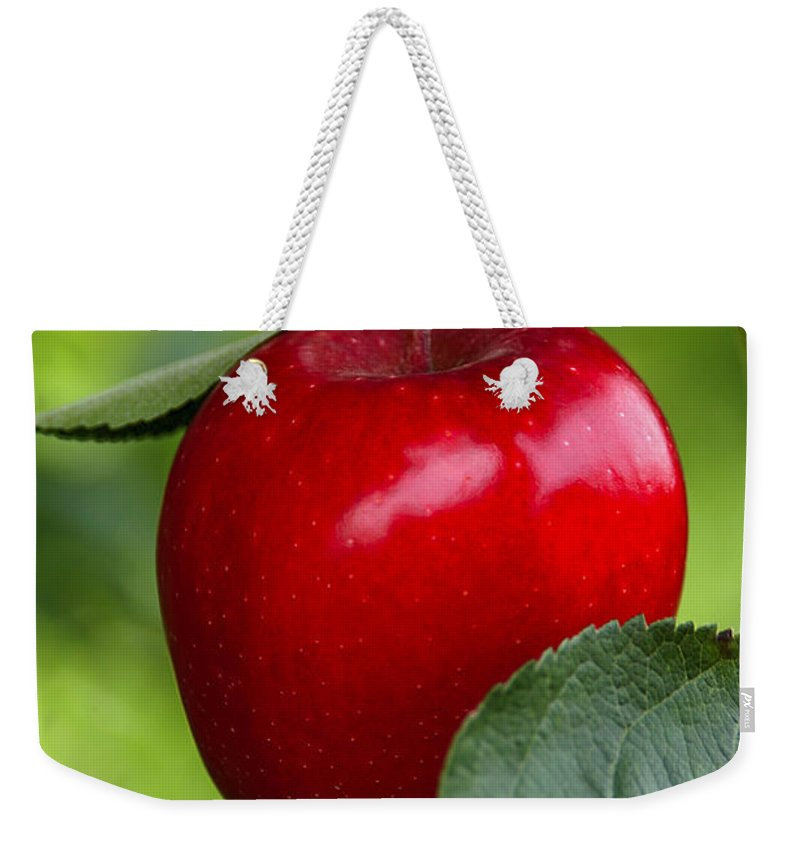 Apple Weekender Tote Bag featuring the photograph The Red Apple by Anthony Sacco