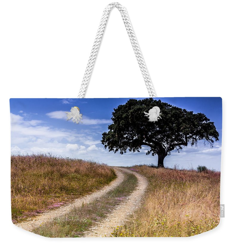 Alentejo Weekender Tote Bag featuring the photograph The Right Way by Edgar Laureano