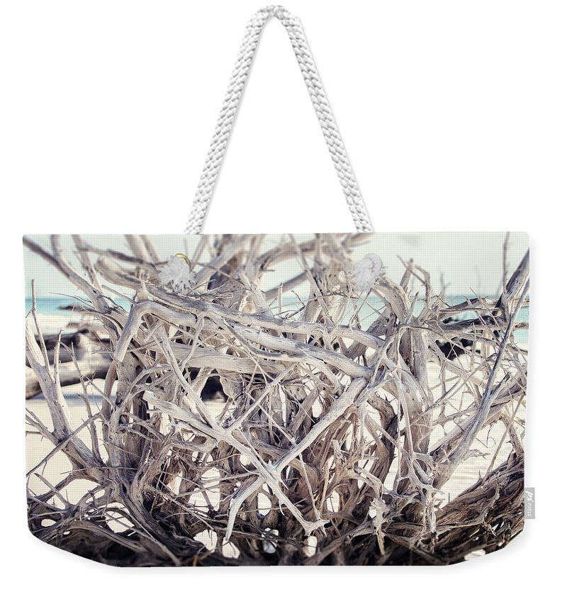 Beach Weekender Tote Bag featuring the photograph The Roots by Lisa Russo