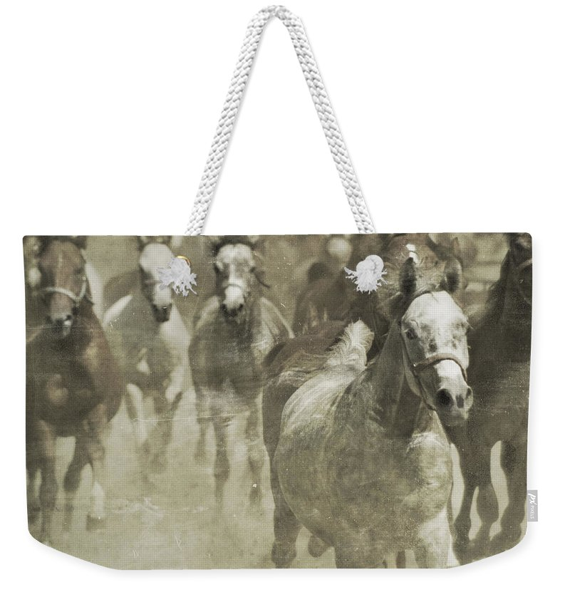 Horse Weekender Tote Bag featuring the photograph The Run For Freedom by Angel Ciesniarska