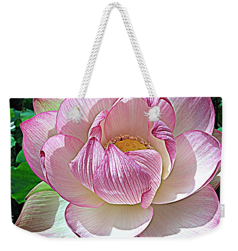 Pink Lotus Flower Weekender Tote Bag featuring the photograph The Sacred Lotus by Carol Skinner