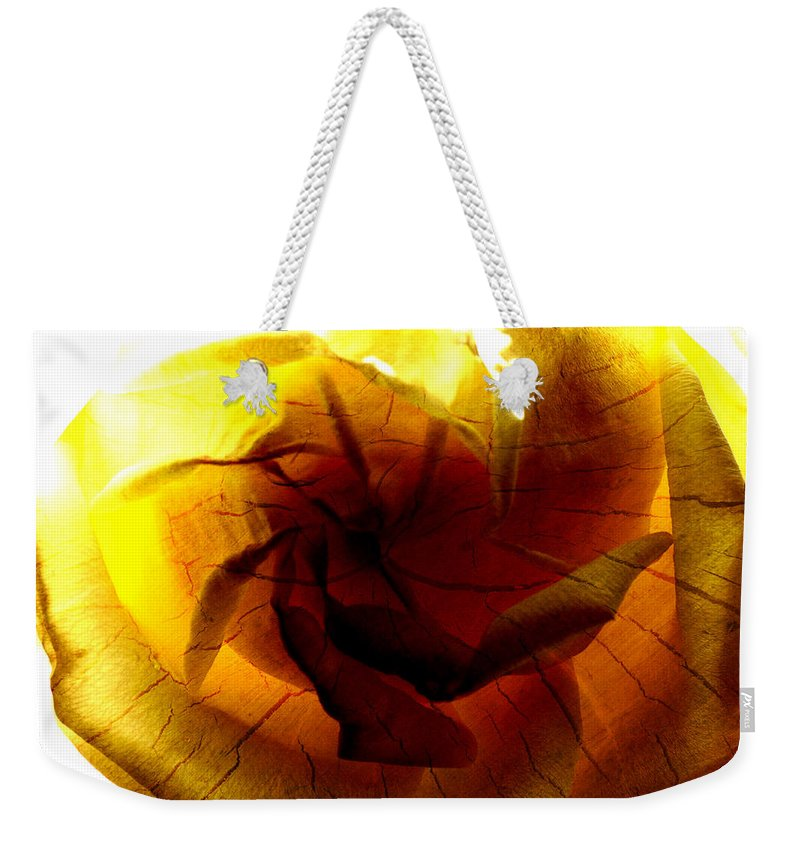 Rose Weekender Tote Bag featuring the photograph The Scorched Rose by Steve Taylor