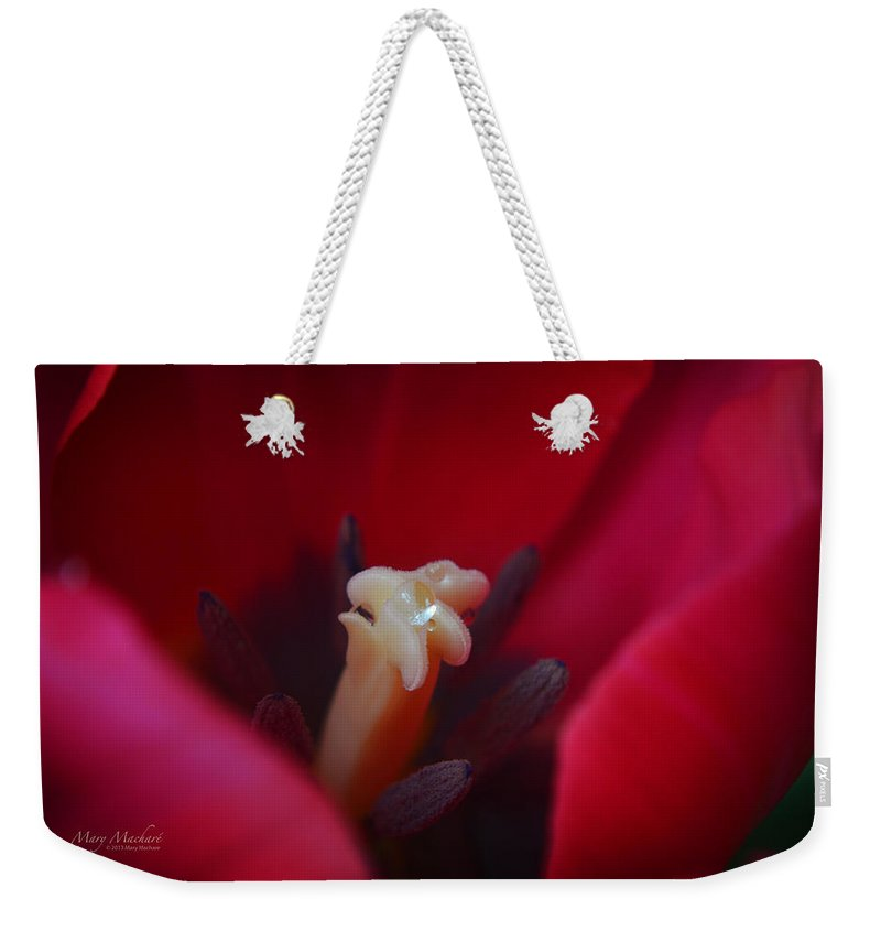 Tulips Weekender Tote Bag featuring the photograph The Secret Life Of Tulips by Mary Machare
