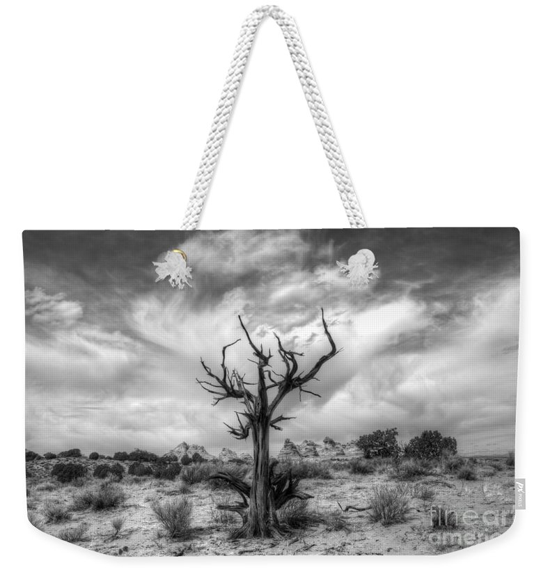 Tree Weekender Tote Bag featuring the photograph The Sentinal South Coyote Buttes by Bob Christopher