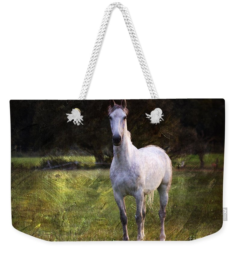 New Forest. White Stallion Weekender Tote Bag featuring the photograph The Sentinel by Angel Ciesniarska