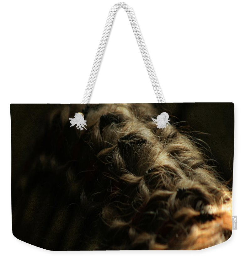 Horse Weekender Tote Bag featuring the photograph The Shape by Angel Ciesniarska
