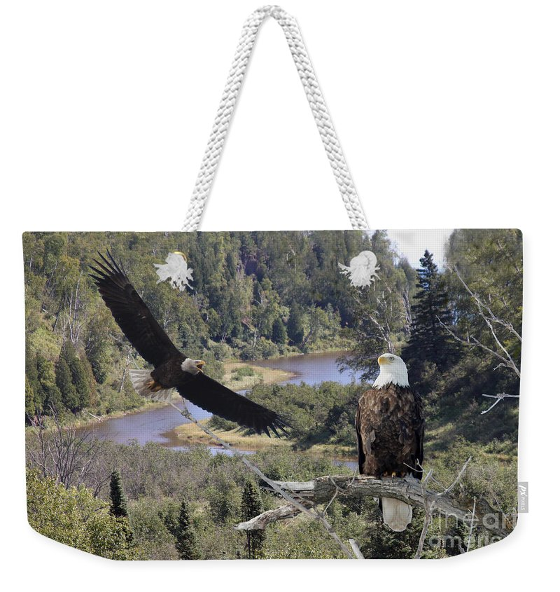 Eagle Weekender Tote Bag featuring the photograph The Silent Watch by Lori Tordsen