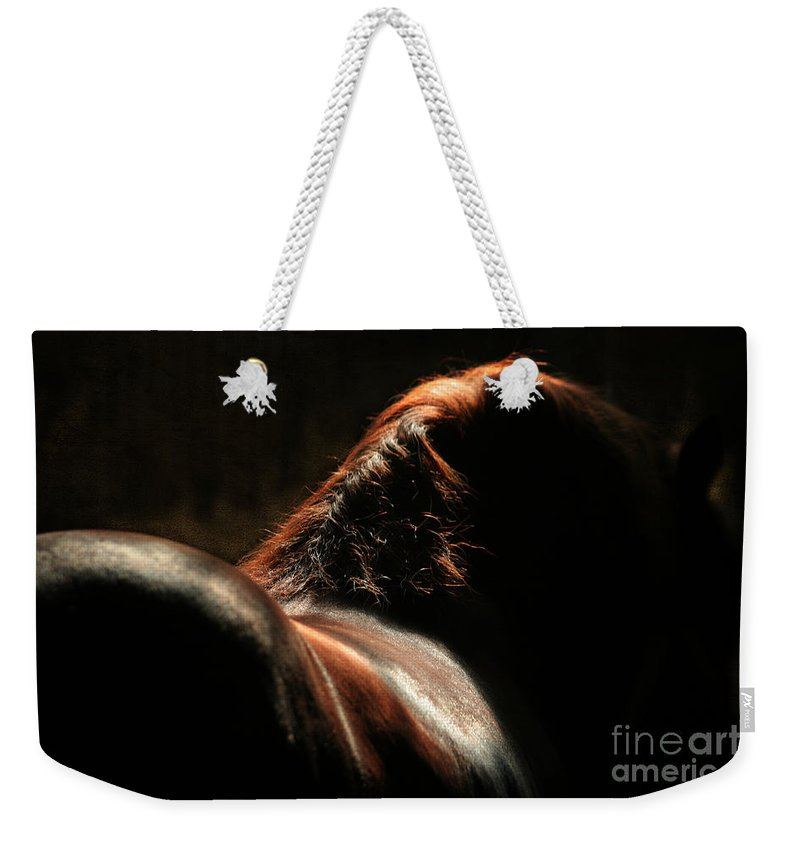 Horse Weekender Tote Bag featuring the photograph The Silhouette by Angel Ciesniarska