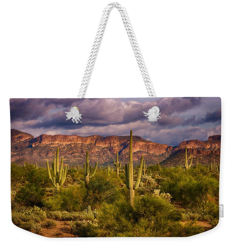 Sonoran Desert Weekender Tote Bag featuring the photograph The Sonoran Golden Hour by Saija Lehtonen
