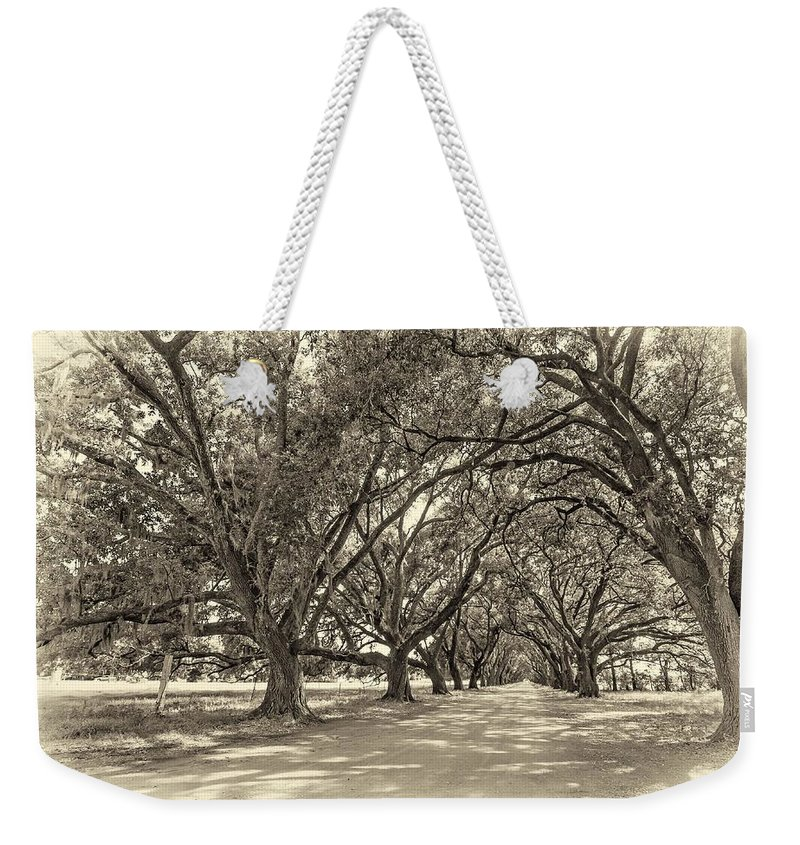 Evergreen Plantation Weekender Tote Bag featuring the photograph The Southern Way Sepia by Steve Harrington