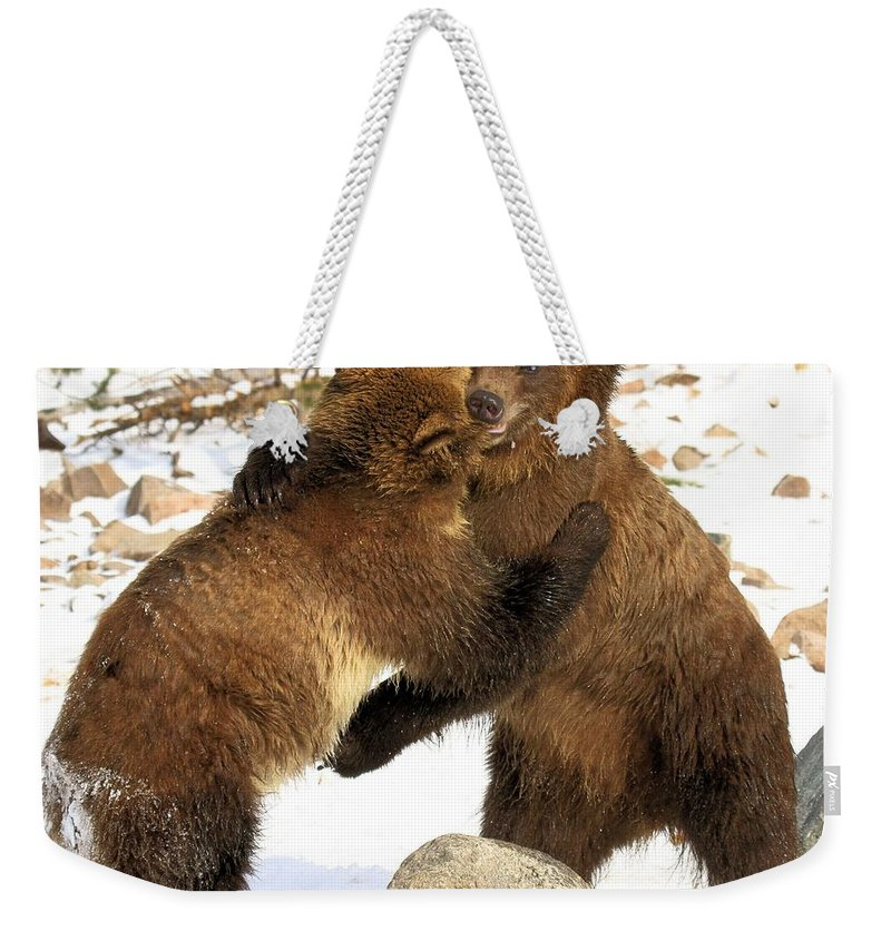 Grizzly Bear Weekender Tote Bag featuring the photograph The Stand Off by Adam Jewell