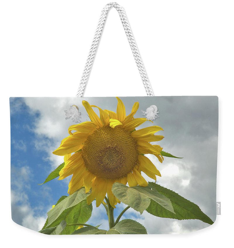 Flower Weekender Tote Bag featuring the photograph The Sun Is Out by Arthur Fix