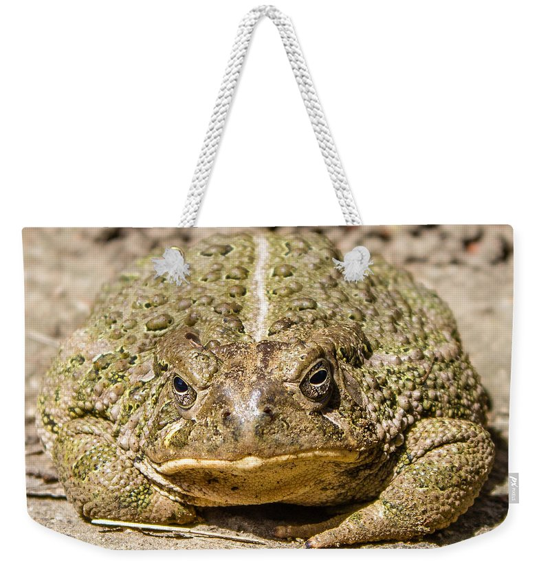 Toad Weekender Tote Bag featuring the photograph The Toad by Chad Rowe