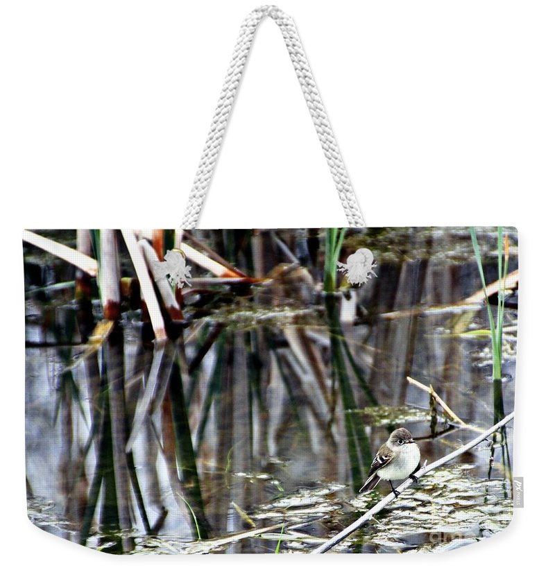 Ruby-crowned Kinglet Birds Weekender Tote Bag featuring the photograph The Watch by Elizabeth Winter