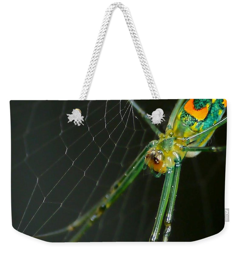 Anthonysr Image Weekender Tote Bag featuring the photograph The Web by Anthony Walker Sr