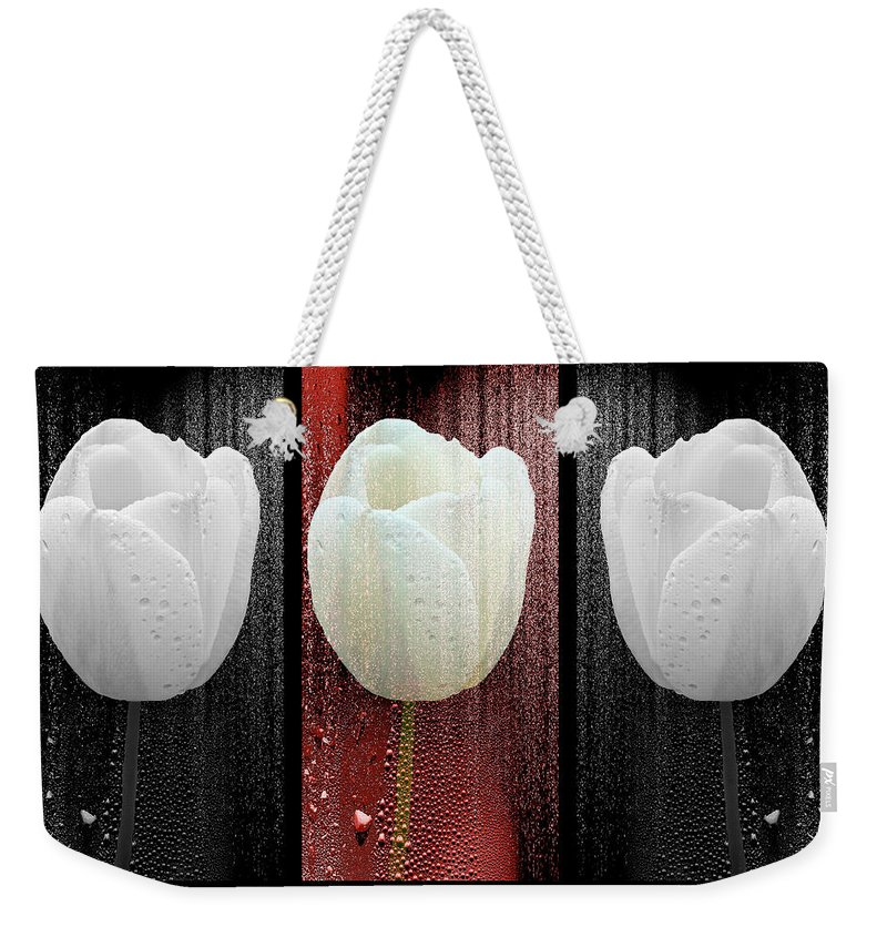 Tulip Weekender Tote Bag featuring the photograph The White Tulip by Mother Nature