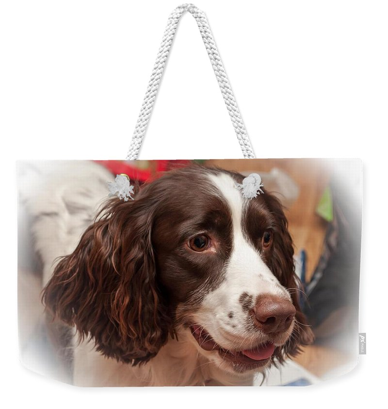 Xmas Weekender Tote Bag featuring the photograph The Wonders Of Christmas by Steve Harrington