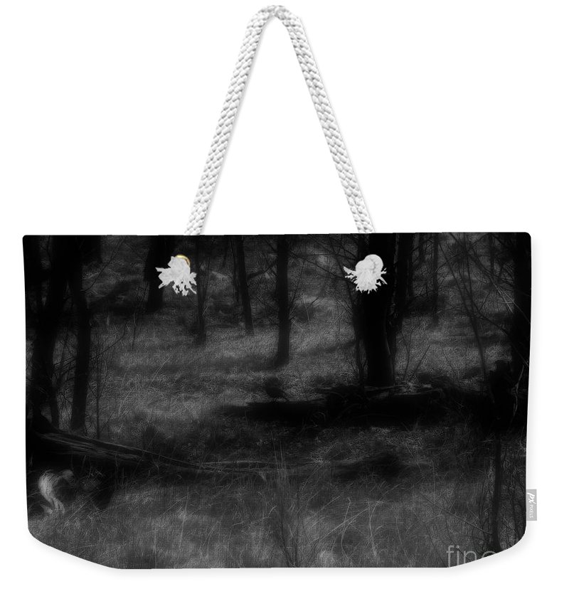 Colorado Weekender Tote Bag featuring the photograph The Woods Are Lovely Dark And Deep by RC DeWinter