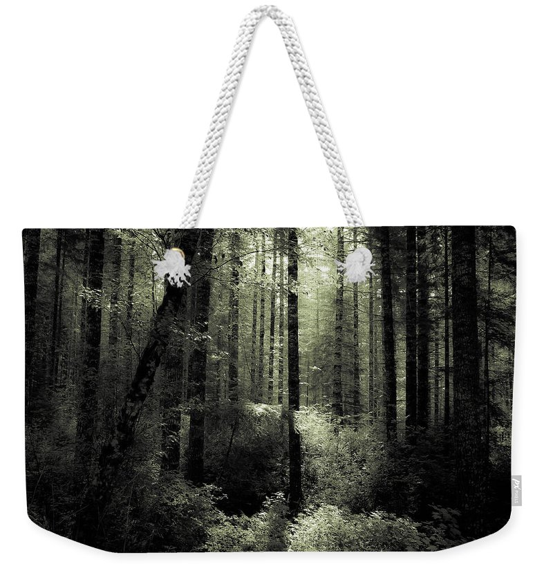 Forest Weekender Tote Bag featuring the photograph The Woods by Katie Wing Vigil