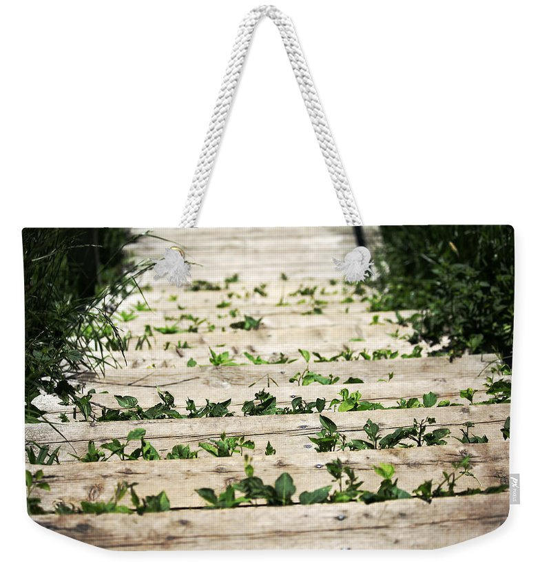 Nature Weekender Tote Bag featuring the photograph There Is No Stopping Nature by Karol Livote