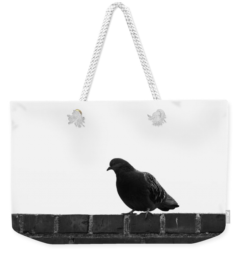 Bird Weekender Tote Bag featuring the photograph Theses Cold Feet by The Artist Project