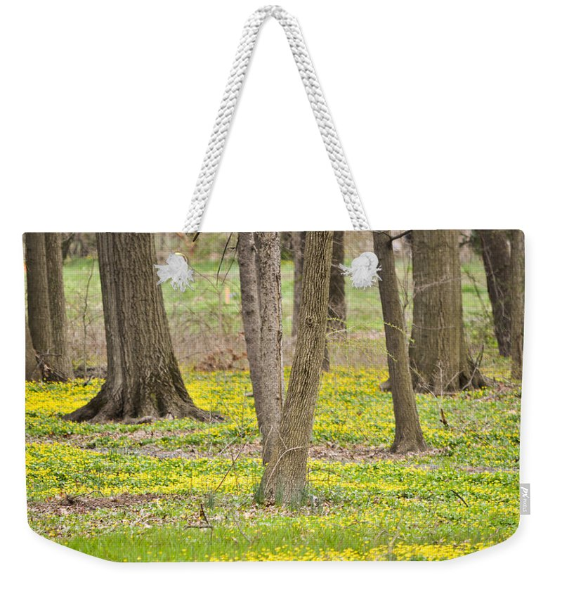 Weekender Tote Bag featuring the mixed media They're Not Weeds by Trish Tritz