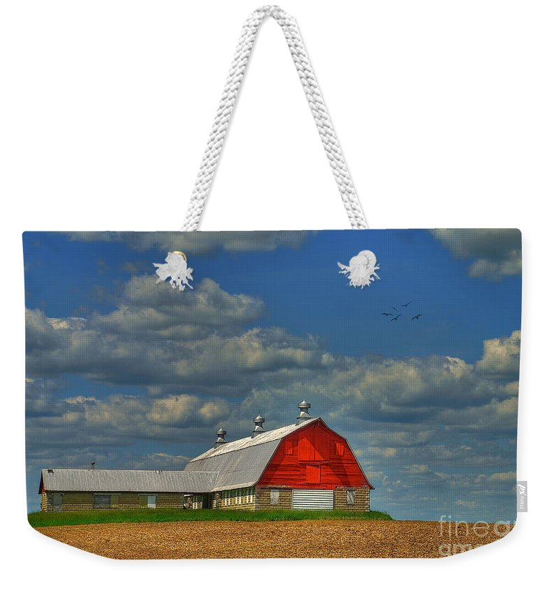 Landscape Weekender Tote Bag featuring the photograph Things Unnoticed At The Time by Lois Bryan