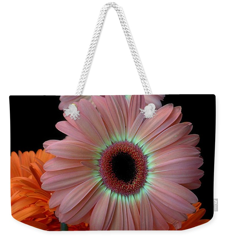 Gerberas Weekender Tote Bag featuring the photograph Third Place by RC deWinter