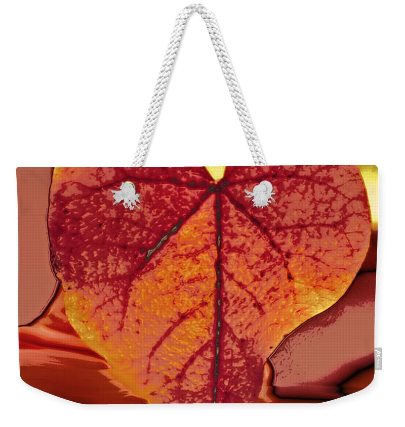 Love Art Weekender Tote Bag featuring the photograph This One Is For Love by Linda Sannuti