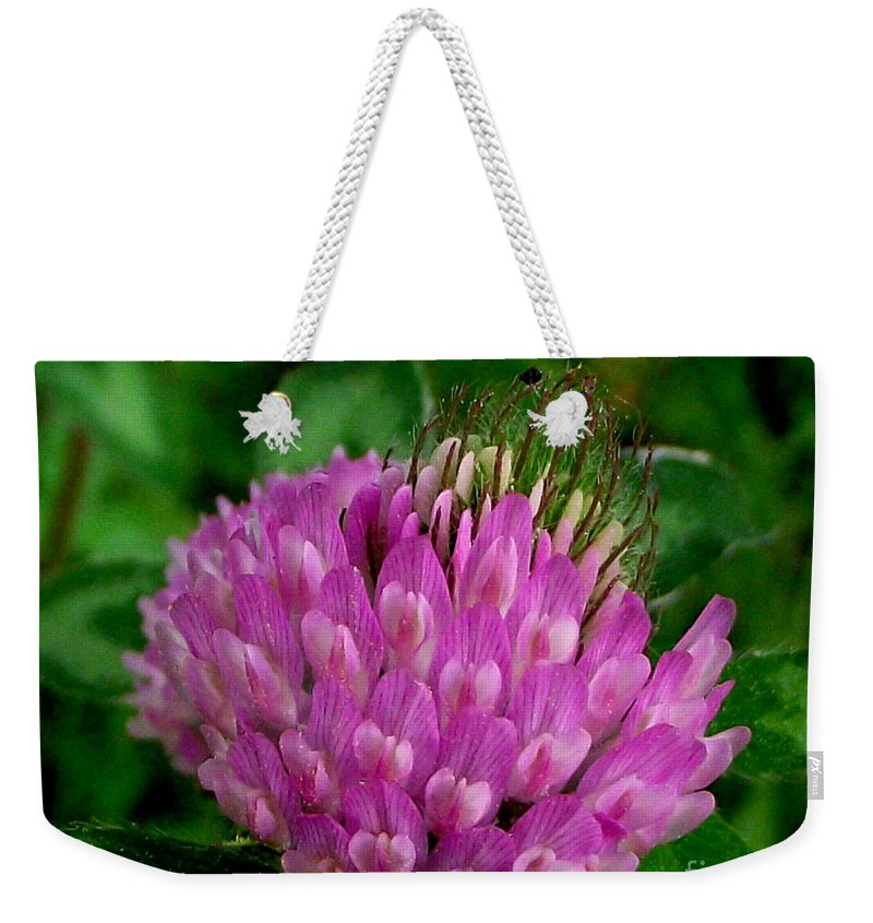 Thistle Weekender Tote Bag featuring the photograph Thistle Beauty by CapeScapes Fine Art Photography