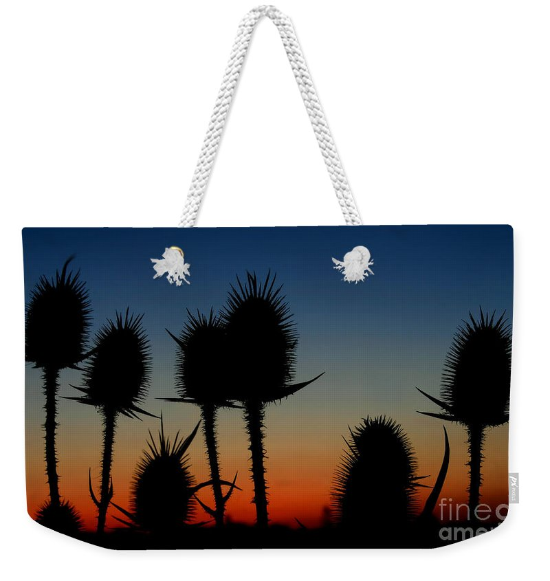 Background Weekender Tote Bag featuring the photograph Thistle by Dan Radi