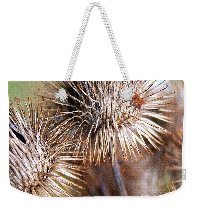 Thistle Weekender Tote Bag featuring the photograph Thistle Seedheads by Laurel Talabere