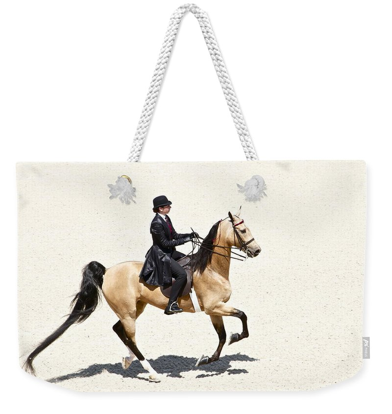 Horse Weekender Tote Bag featuring the photograph Three Gaited Buckskin by Alice Gipson