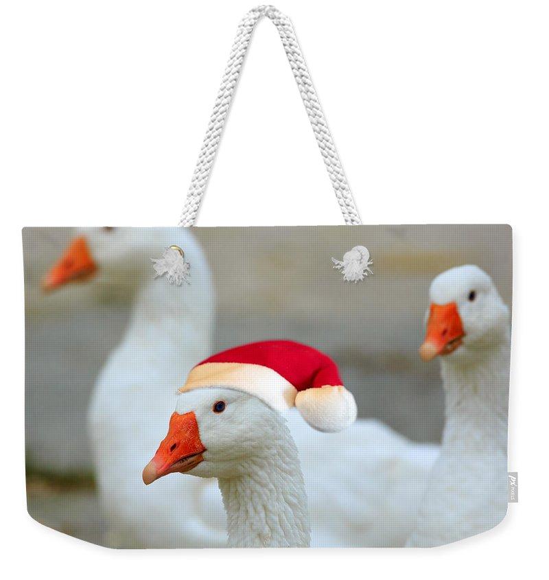 Anser Cygnoides Weekender Tote Bags