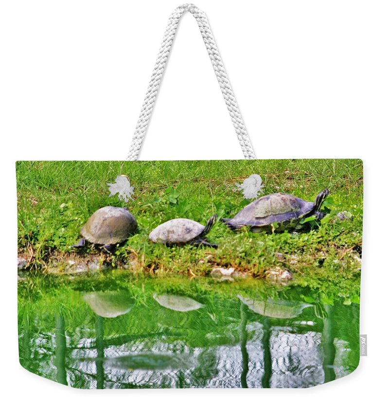 Everglades Weekender Tote Bag featuring the photograph Three In A Row by Chuck Hicks