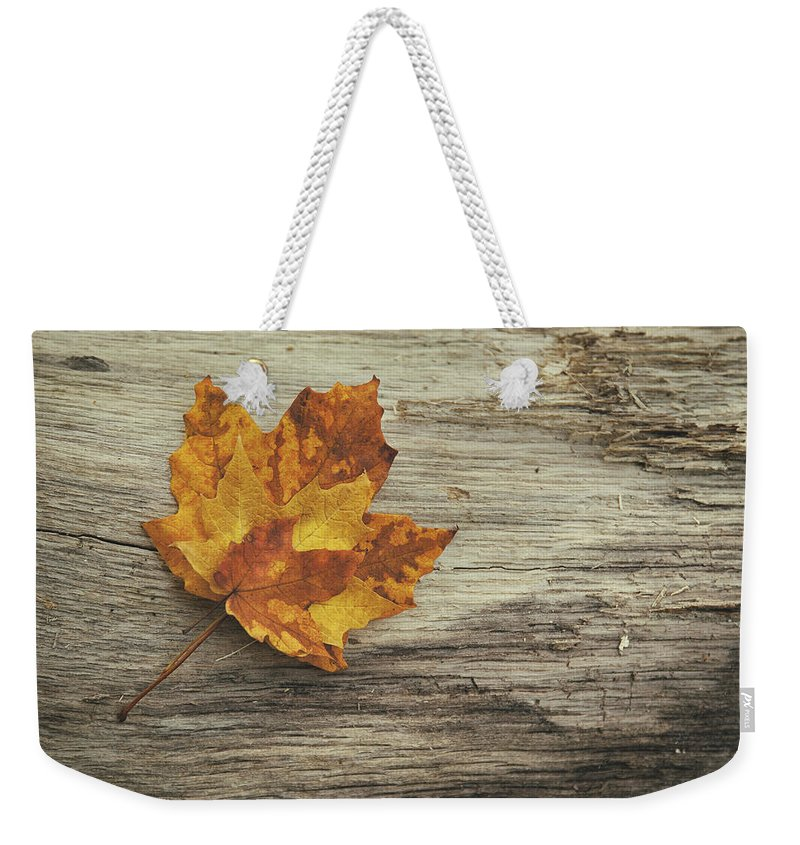 Maple Leaf Weekender Tote Bag featuring the photograph Three Leaves by Scott Norris