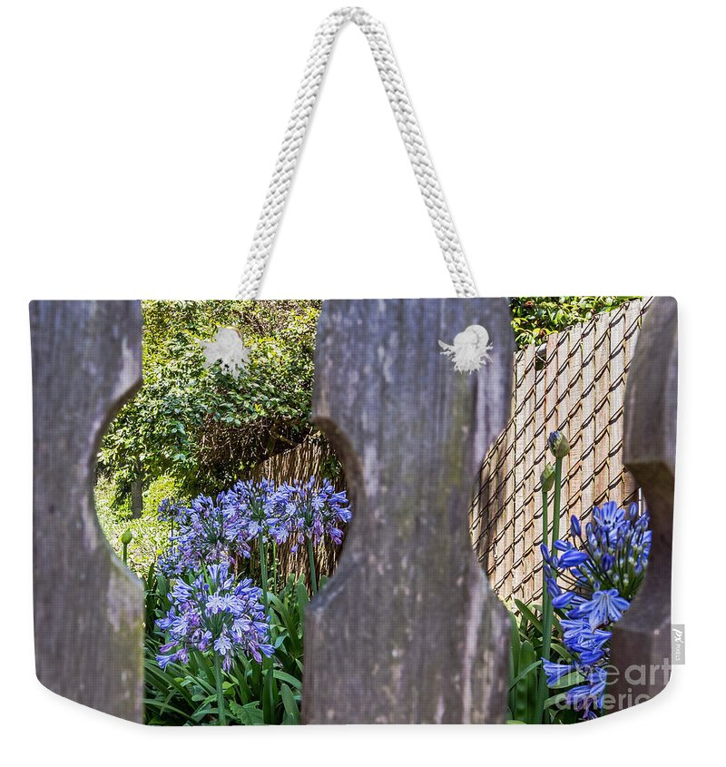 Agapanthus Weekender Tote Bag featuring the photograph Through The Fence by Kate Brown