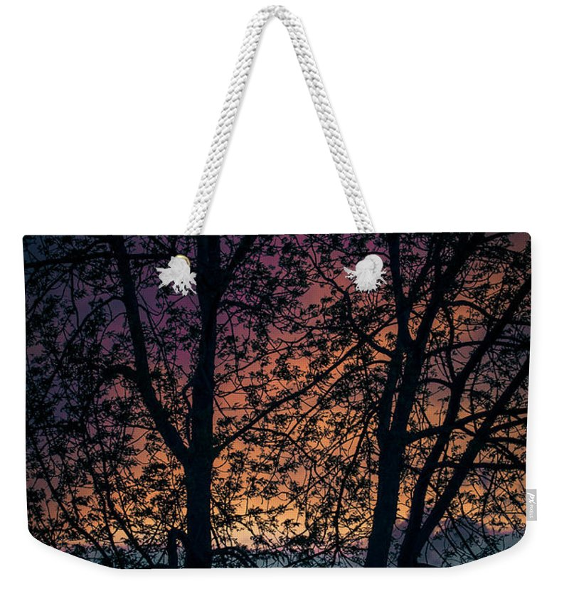 Sun Weekender Tote Bag featuring the photograph Through The Tree by Amel Dizdarevic