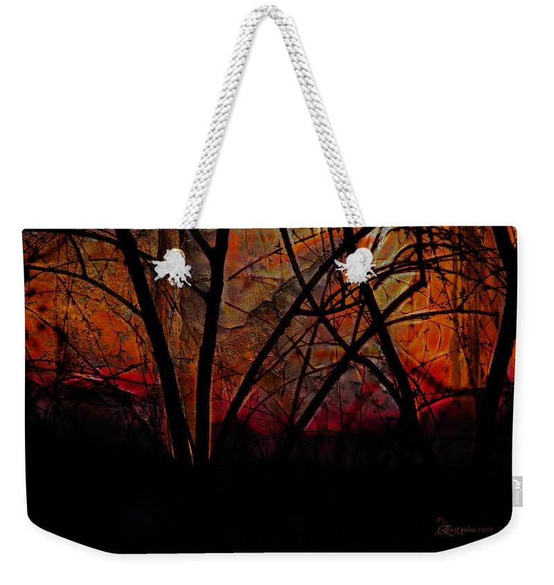 Erica Weekender Tote Bag featuring the photograph Through The Trees by Ericamaxine Price
