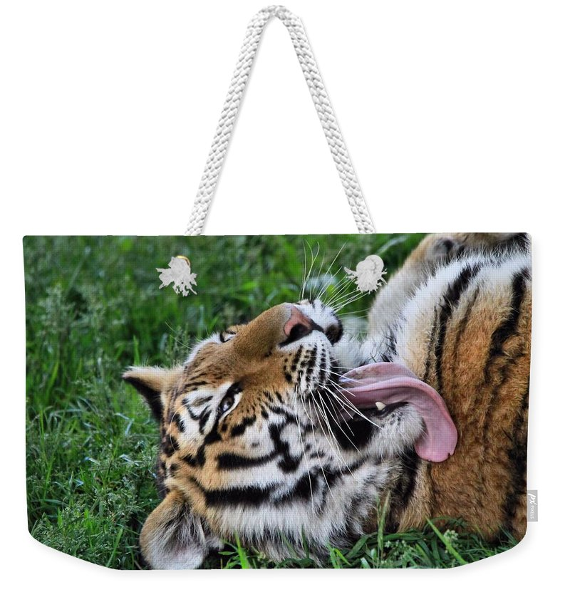 Tiger Tongue Weekender Tote Bag featuring the photograph Tiger Tongue by Dan Sproul