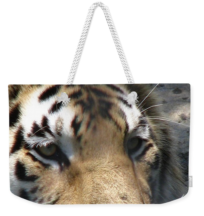 Patzer Weekender Tote Bag featuring the photograph Tiger Water by Greg Patzer