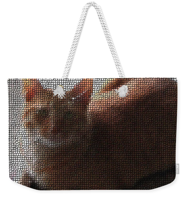 Cat Weekender Tote Bag featuring the photograph Tigger by April Patterson
