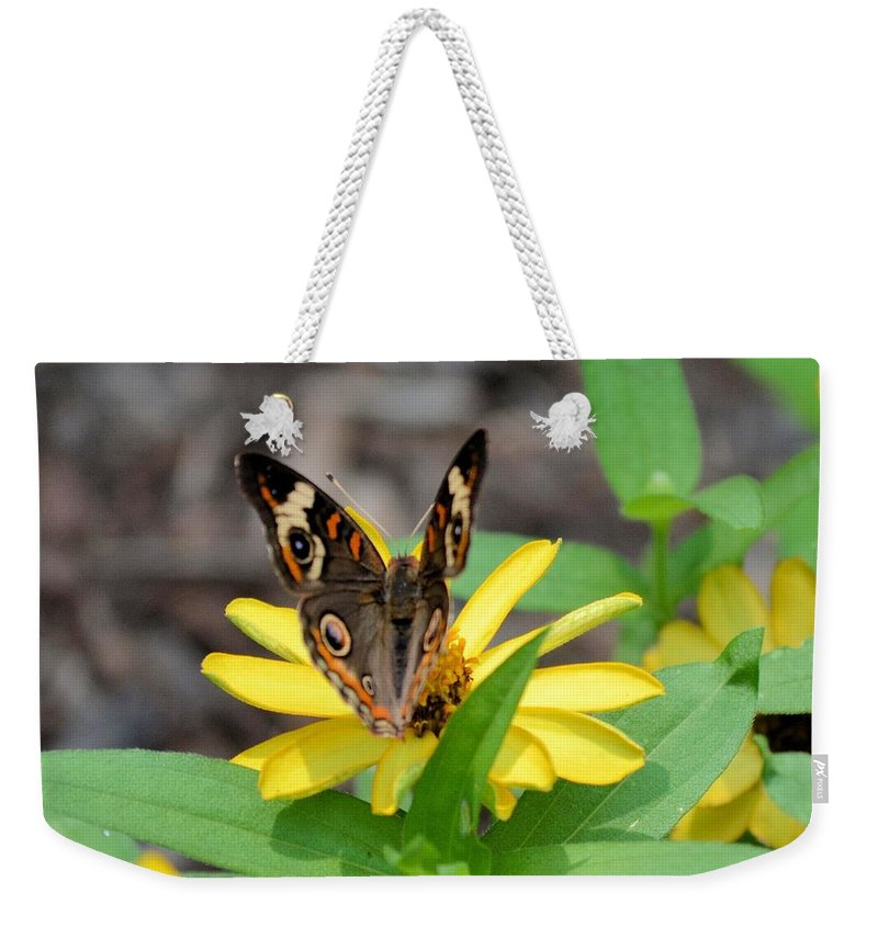 Time To Move On Weekender Tote Bag featuring the photograph Time To Move On by Maria Urso