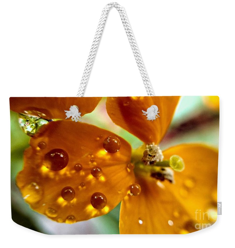 Dew On Wildflower Weekender Tote Bag featuring the photograph Tiny Dew Drop On Wild Flower Macro by Peggy Franz