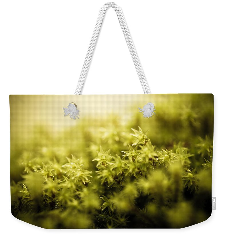 Stars Weekender Tote Bag featuring the photograph Tiny Stars by Shane Holsclaw