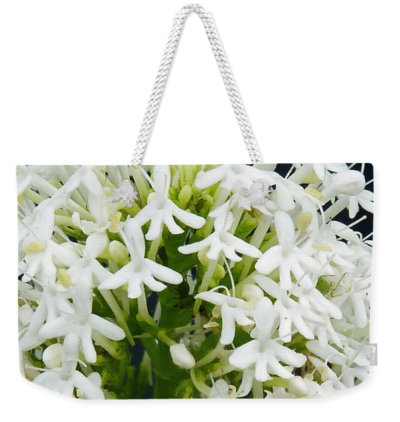 Small Weekender Tote Bag featuring the photograph Tiny Tots by Steve Taylor