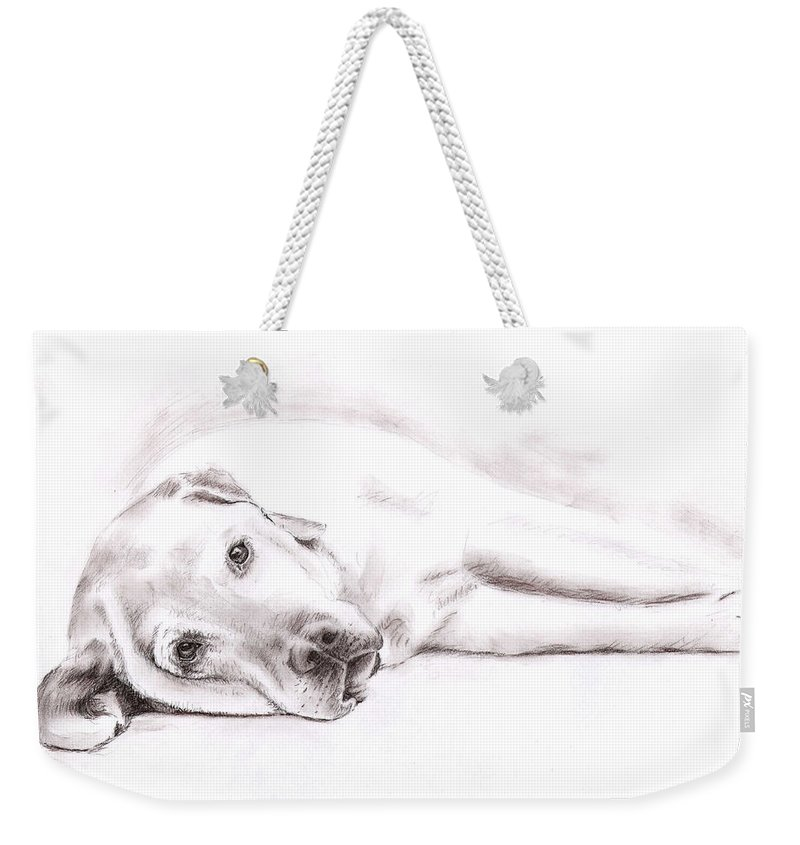 Dog Weekender Tote Bag featuring the drawing Tired Labrador by Nicole Zeug